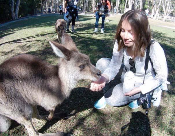 Μόνο στην Αυστραλία #23 (5)