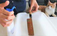 Δείτε τι μπορεί να κάνει ένα σκουριασμένο μαχαίρι αν το γυαλίσεις