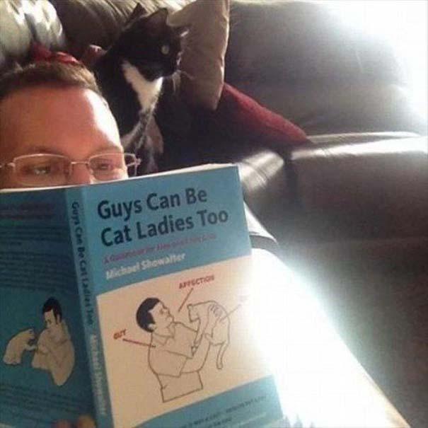 Γάτες που... κάνουν τα δικά τους! #56 (5)