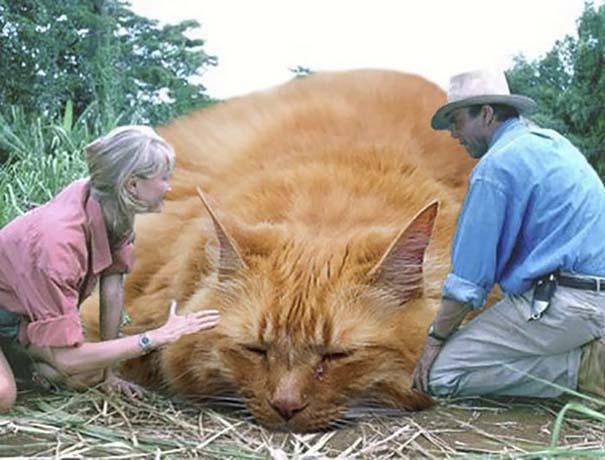 Αν στο Jurassic Park πρωταγωνιστούσαν γάτες (1)