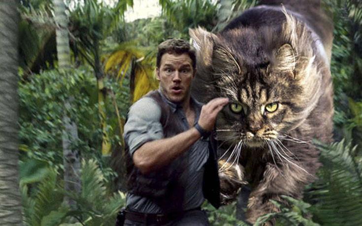 Αν στο Jurassic Park πρωταγωνιστούσαν γάτες (4)