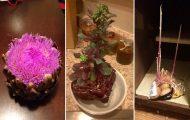 18 «ανατριχιαστικές» εικόνες με φρούτα και λαχανικά που βλάστησαν νωρίς