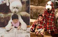 Κοριτσάκι και το Poodle του κάνουν τα πάντα μαζί