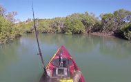 Όταν έχεις βρει επιτέλους ένα ήσυχο σημείο για ψάρεμα...