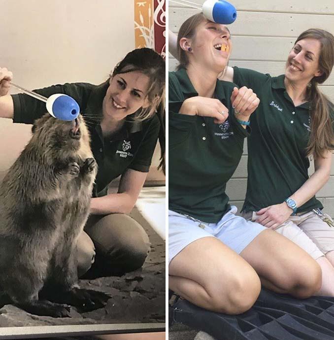 Όταν οι φροντιστές σε ζωολογικό κήπο κάνουν χαβαλέ (1)