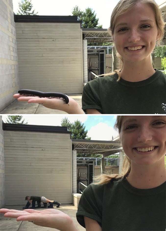 Όταν οι φροντιστές σε ζωολογικό κήπο κάνουν χαβαλέ (5)