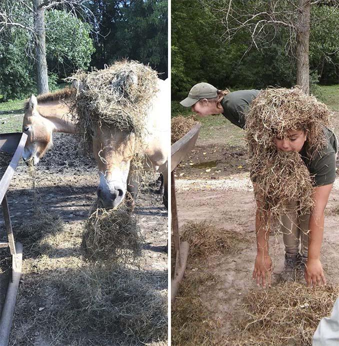 Όταν οι φροντιστές σε ζωολογικό κήπο κάνουν χαβαλέ (11)