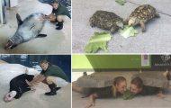 Όταν οι φροντιστές σε ζωολογικό κήπο κάνουν χαβαλέ...