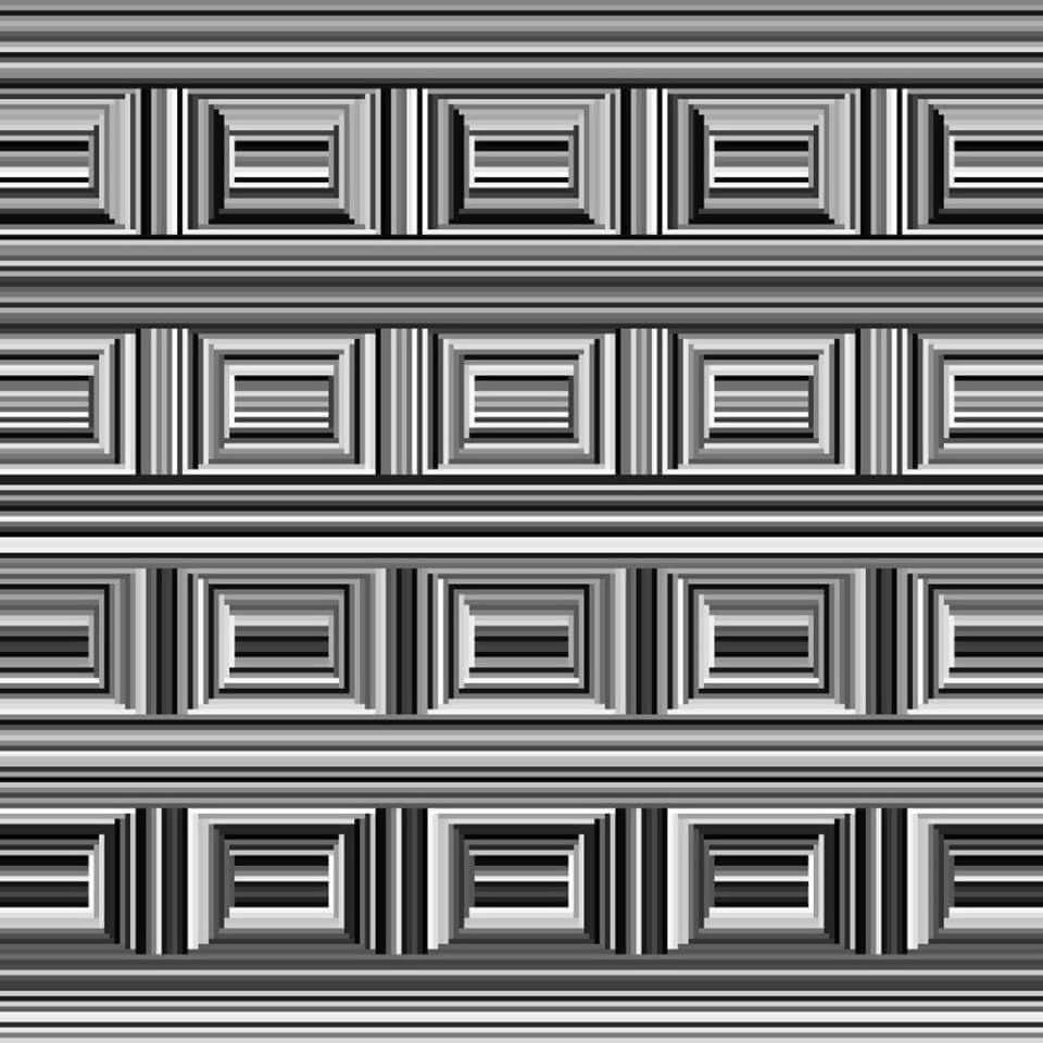 Εσείς πόσους κύκλους βλέπετε σε αυτή την εικόνα; | Φωτογραφία της ημέρας