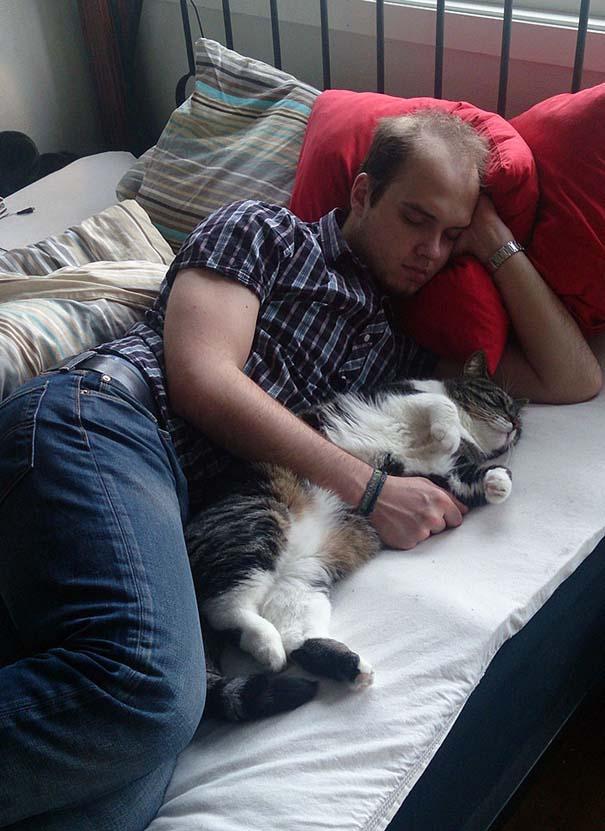 Άνθρωποι που δεν ήθελαν γάτα (12)