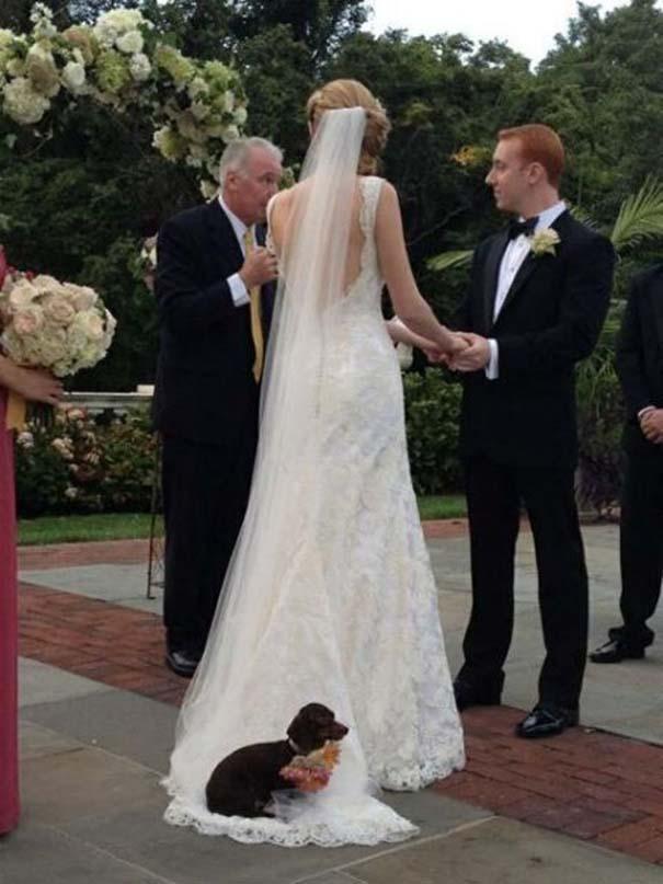 Αστείες φωτογραφίες γάμων #84 (7)