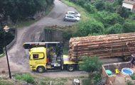 Φορτηγό με φορτίο ξυλείας περνάει από γέφυρα με εντυπωσιακή ακρίβεια κινήσεων