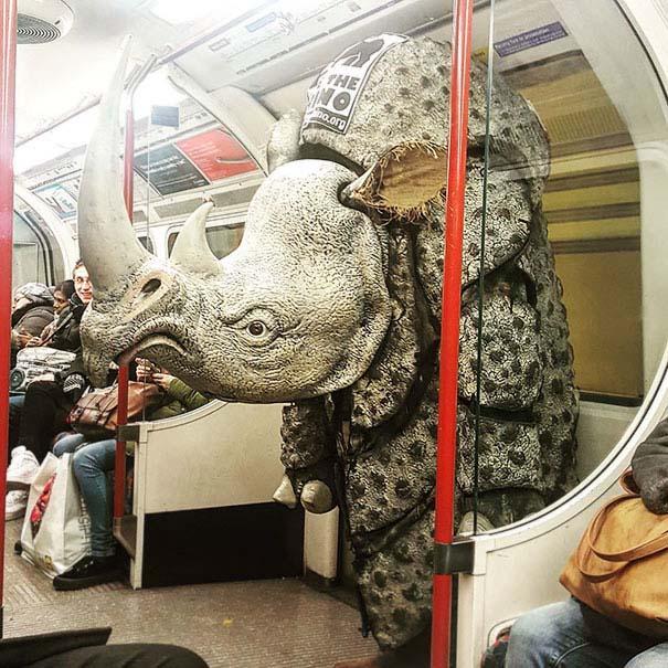 Παράξενες και κωμικοτραγικές φωτογραφίες στα μέσα μεταφοράς #27 (9)