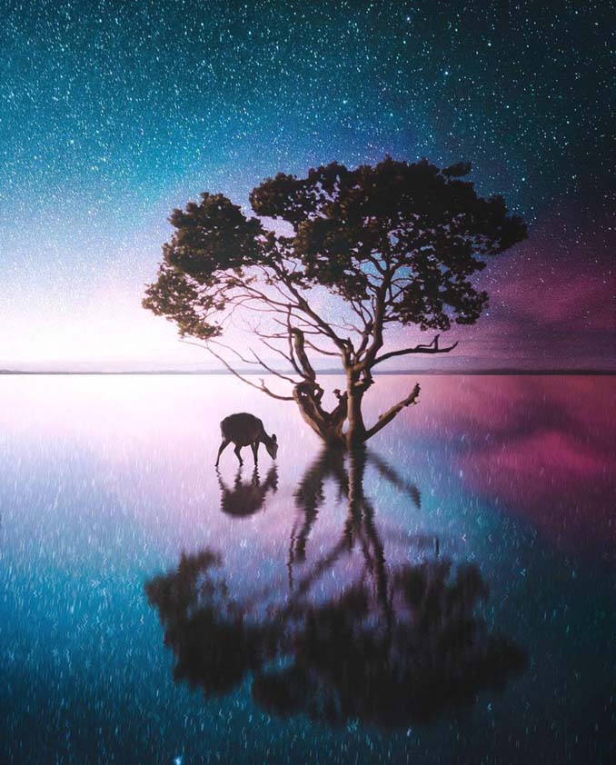 Οι μαγευτικές φωτογραφικές συνθέσεις ενός 19χρονου καλλιτέχνη (4)