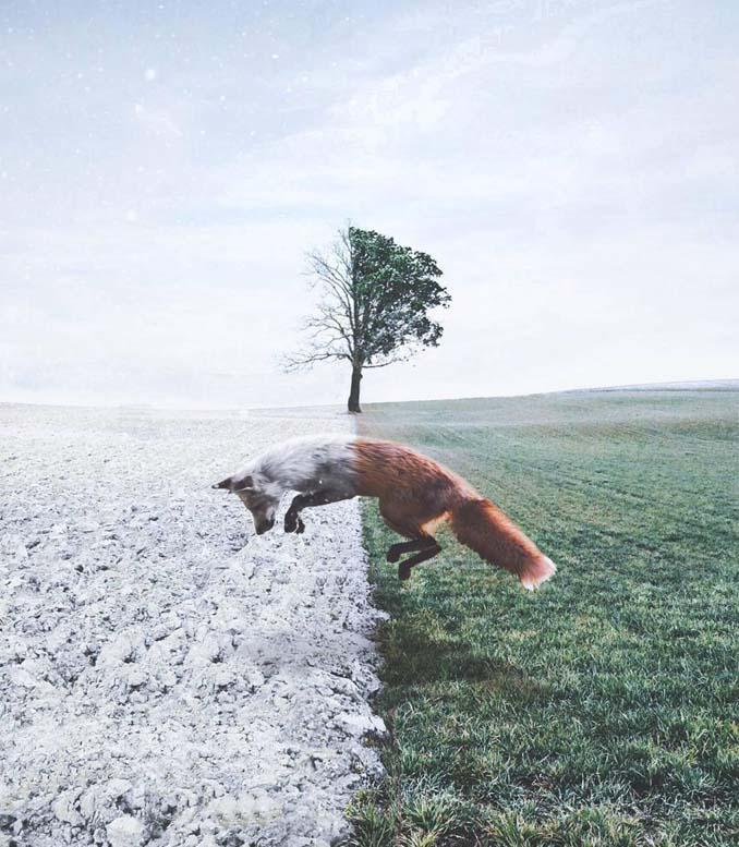 Οι μαγευτικές φωτογραφικές συνθέσεις ενός 19χρονου καλλιτέχνη (18)