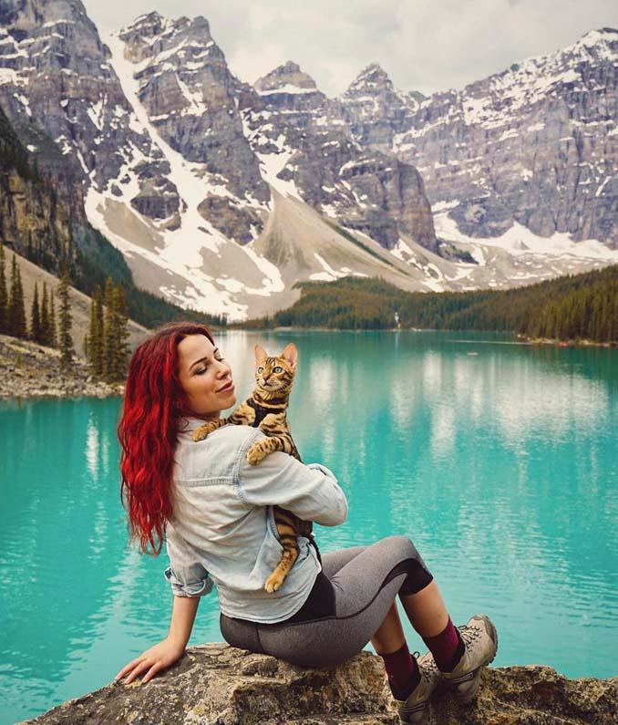 Οι περιπέτειες μιας πανέμορφης γάτας στην άγρια φύση του Καναδά (19)