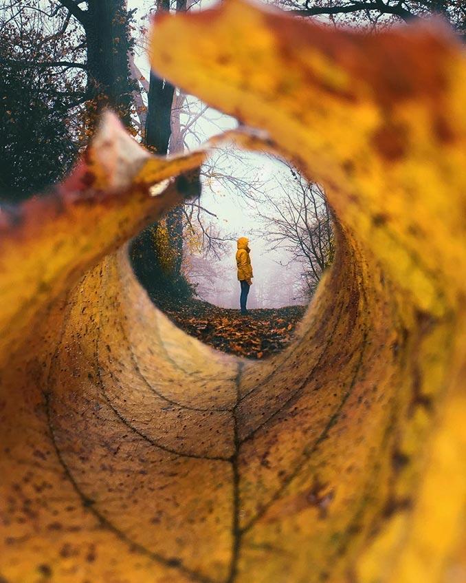 Ένα φθινοπωρινό πορτρέτο | Φωτογραφία της ημέρας