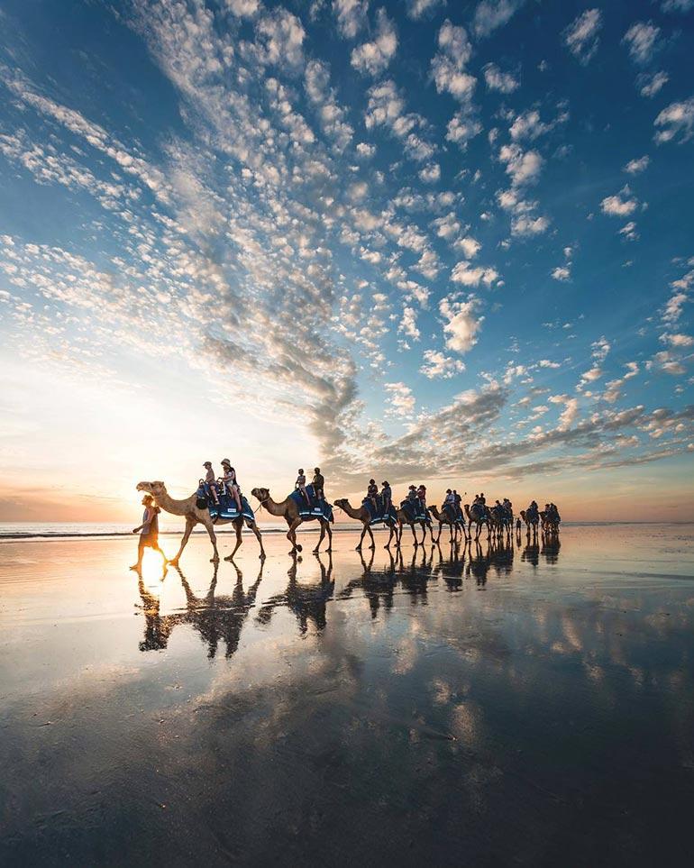 Βόλτα με καμήλες στην παραλία | Φωτογραφία της ημέρας