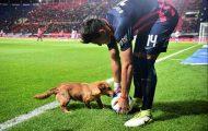 Σκύλος διακόπτει ποδοσφαιρικό αγώνα στην Αργεντινή, κάνει το Internet να λιώνει