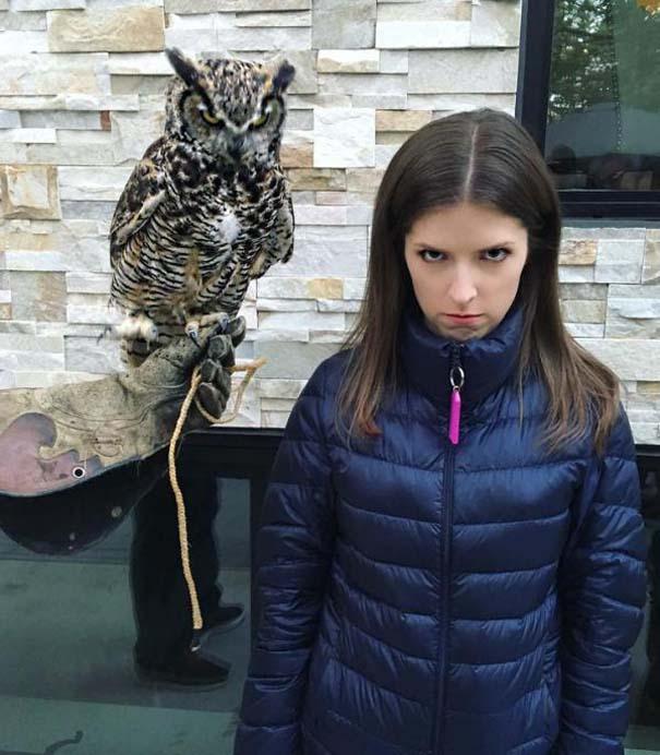 Η τρομακτική Anna Kendrick με την κουκουβάγια της προκάλεσαν ξεκαρδιστικό Photoshop Battle (1)