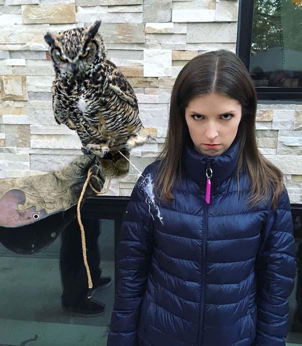 Η τρομακτική Anna Kendrick με την κουκουβάγια της προκάλεσαν ξεκαρδιστικό Photoshop Battle (3)