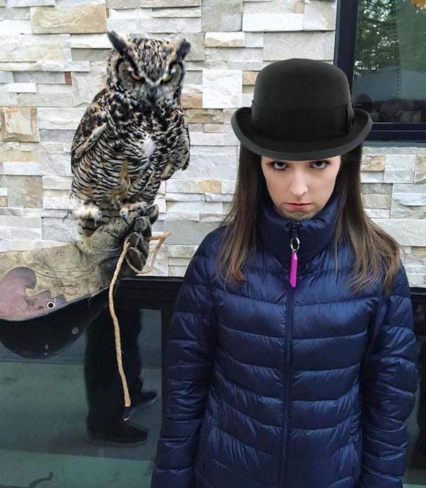 Η τρομακτική Anna Kendrick με την κουκουβάγια της προκάλεσαν ξεκαρδιστικό Photoshop Battle (4)
