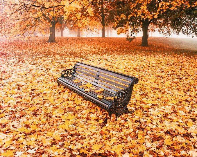 Φωτογράφος απαθανατίζει το Φθινόπωρο σε διάφορα σημεία του κόσμου (2)