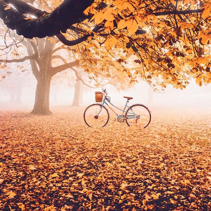 Φωτογράφος απαθανατίζει το Φθινόπωρο σε διάφορα σημεία του κόσμου (1)