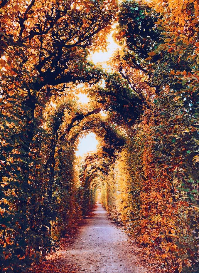 Φωτογράφος απαθανατίζει το Φθινόπωρο σε διάφορα σημεία του κόσμου (14)