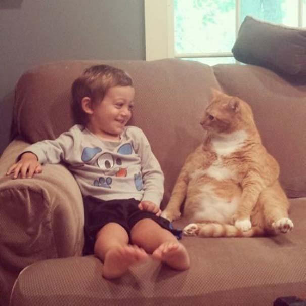 Γάτες που... κάνουν τα δικά τους! #68 (7)