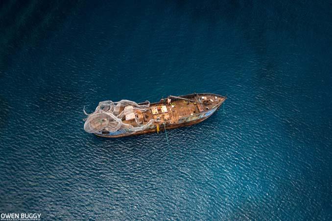 Αυτό το γιγαντιαίο χταπόδι θα βοηθήσει στη δημιουργία ενός τεχνητού κοραλλιογενή υφάλου (4)