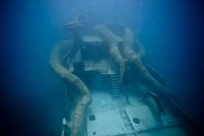 Αυτό το γιγαντιαίο χταπόδι θα βοηθήσει στη δημιουργία ενός τεχνητού κοραλλιογενή υφάλου (8)