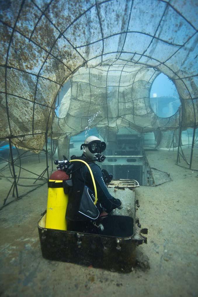 Αυτό το γιγαντιαίο χταπόδι θα βοηθήσει στη δημιουργία ενός τεχνητού κοραλλιογενή υφάλου (13)