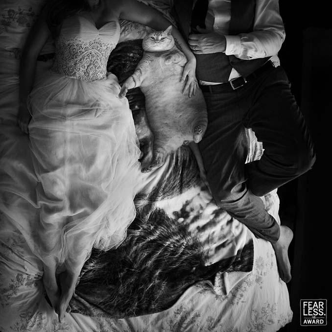 Οι κορυφαίες φωτογραφίες γάμων του 2017 θα σας μαγέψουν (22)