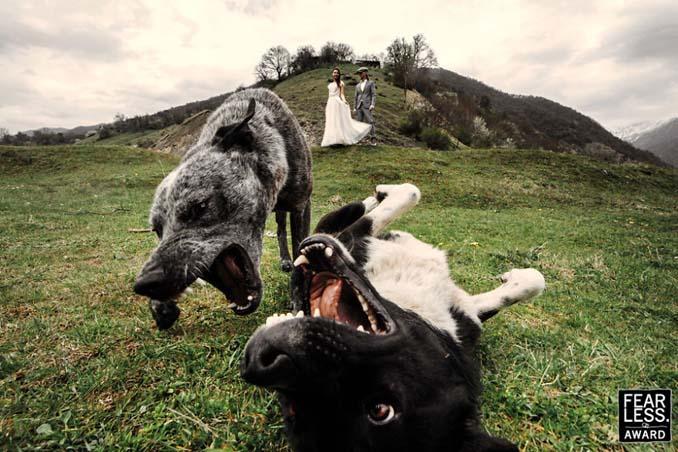 Οι κορυφαίες φωτογραφίες γάμων του 2017 θα σας μαγέψουν (23)