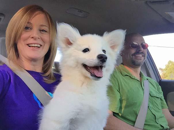 Η πρώτη συνάντηση ανθρώπων με τον σκύλο τους σε φωτογραφίες που θα σας φτιάξουν τη μέρα (13)