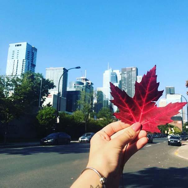 Εν τω μεταξύ, στον Καναδά... #36 (9)