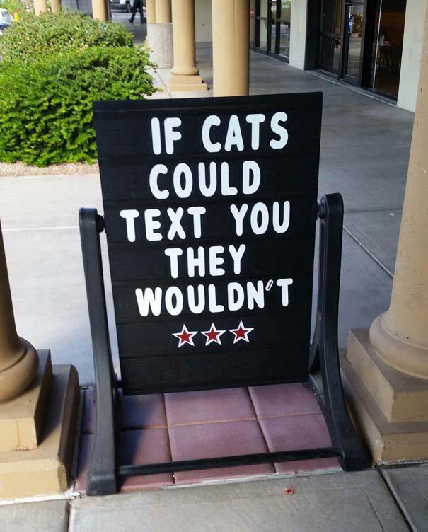 Γάτες που... κάνουν τα δικά τους! #70 (9)