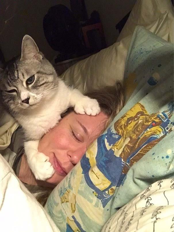 Γάτες που... κάνουν τα δικά τους! #72 (1)