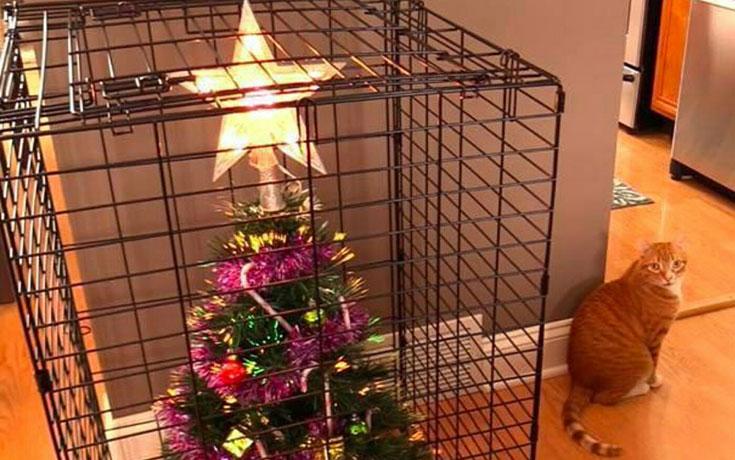 Πως να σώσετε το χριστουγεννιάτικο δέντρο από τα κατοικίδια (1)