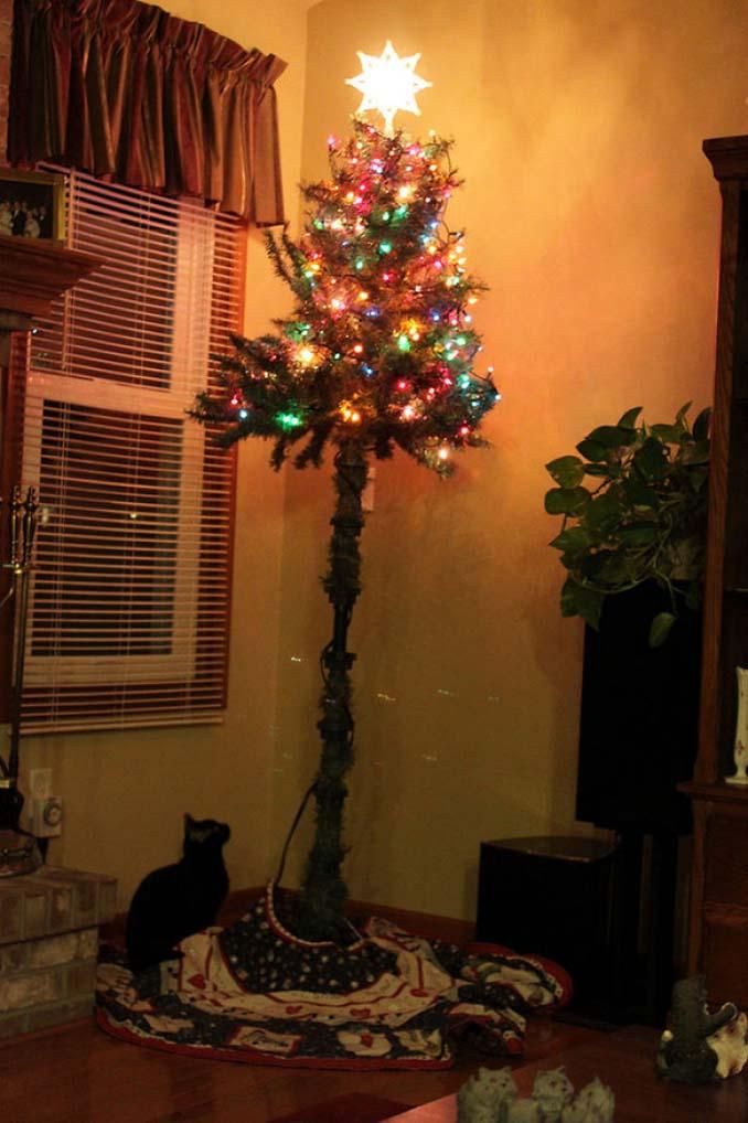 Πως να σώσετε το χριστουγεννιάτικο δέντρο από τα κατοικίδια (6)