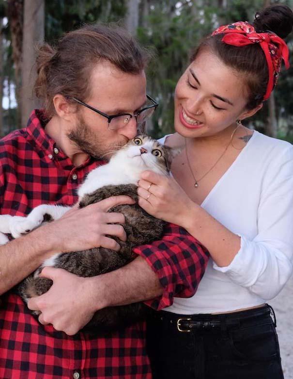 Γάτες που... κάνουν τα δικά τους! #74 (9)