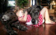 Ο ξεχωριστός δεσμός παιδιών και σκύλων μέσα από φωτογραφίες (1)