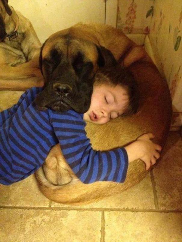 Ο ξεχωριστός δεσμός παιδιών και σκύλων μέσα από φωτογραφίες (2)