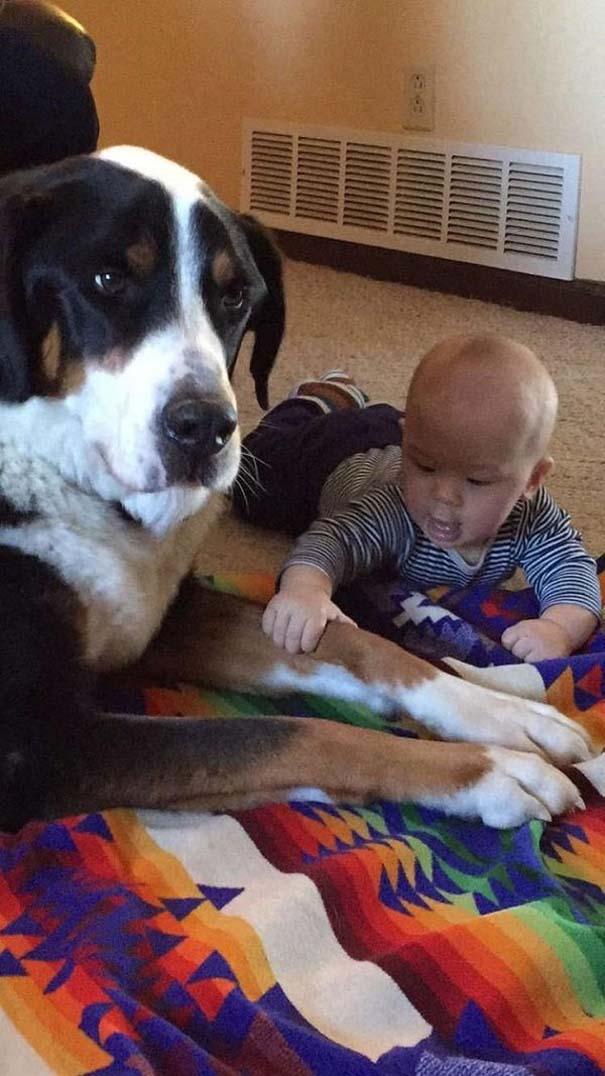 Ο ξεχωριστός δεσμός παιδιών και σκύλων μέσα από φωτογραφίες (3)