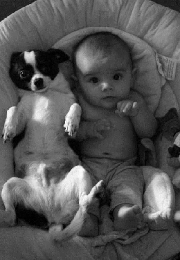 Ο ξεχωριστός δεσμός παιδιών και σκύλων μέσα από φωτογραφίες (5)