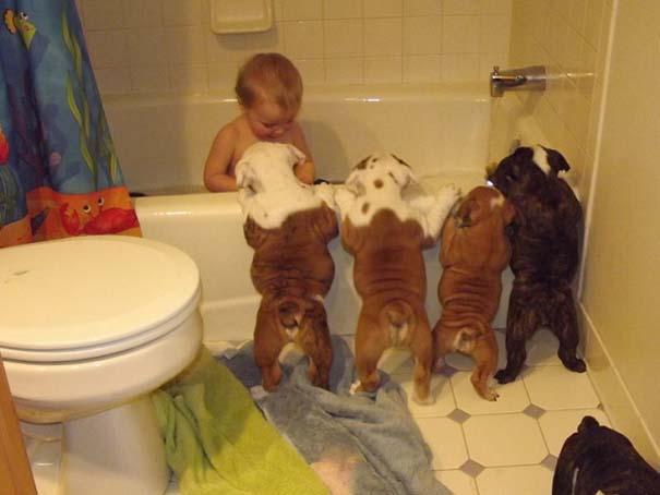 Ο ξεχωριστός δεσμός παιδιών και σκύλων μέσα από φωτογραφίες (15)