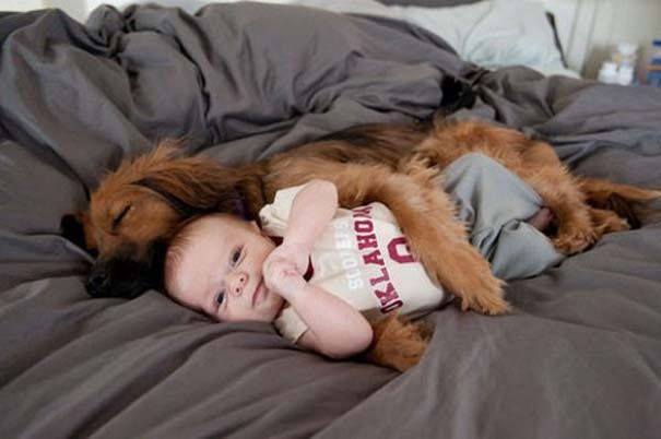 Ο ξεχωριστός δεσμός παιδιών και σκύλων μέσα από φωτογραφίες (16)