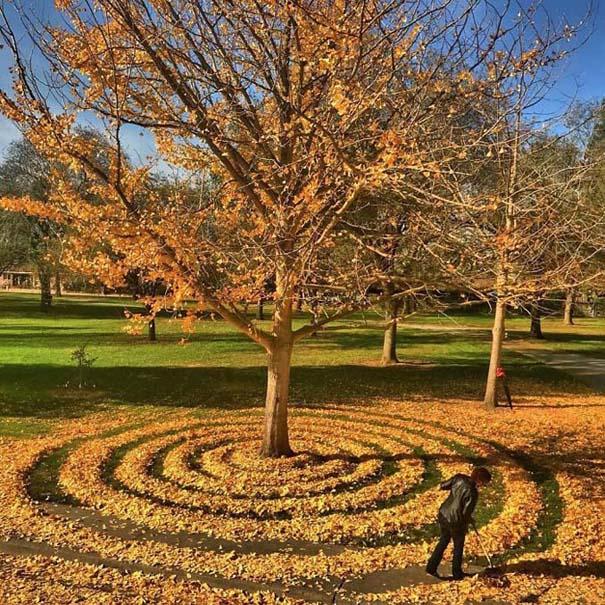 Καλλιτέχνιδα μετατρέπει πεσμένα φύλλα σε εκπληκτικά έργα τέχνης (4)