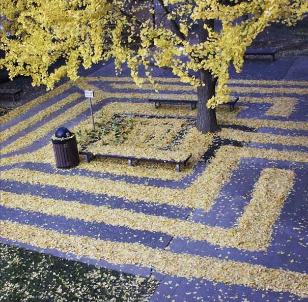 Καλλιτέχνιδα μετατρέπει πεσμένα φύλλα σε εκπληκτικά έργα τέχνης (7)